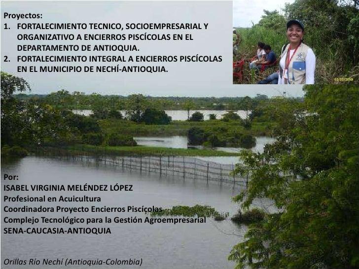 Proyecto Encierros Isa