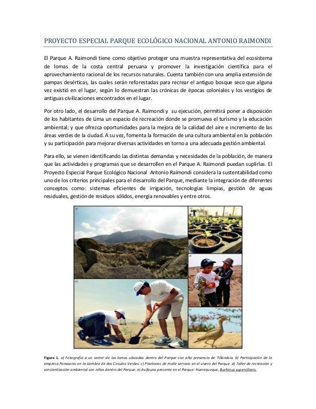 PROYECTO ESPECIAL PARQUE ECOLÓGICO NACIONAL ANTONIO RAIMONDIEl Parque A. Raimondi tiene como objetivo proteger una muestra...