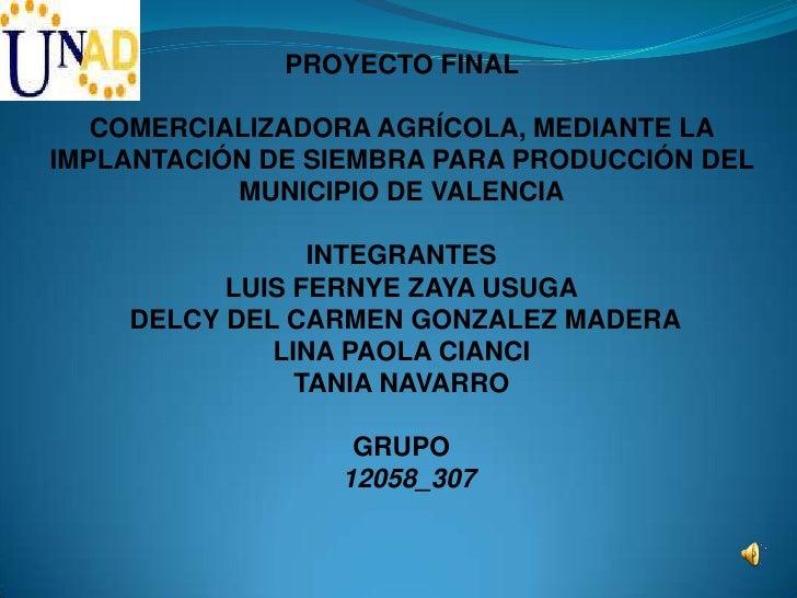 PROYECTO FINAL   COMERCIALIZADORA AGRÍCOLA, MEDIANTE LAIMPLANTACIÓN DE SIEMBRA PARA PRODUCCIÓN DEL           MUNICIPIO DE ...