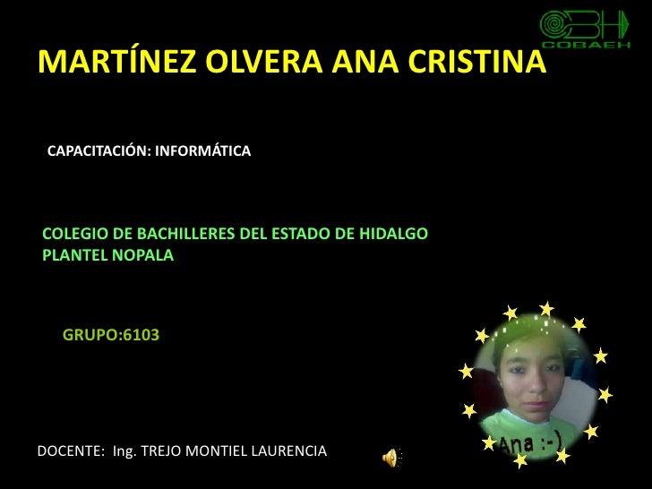 Proyecto Final Ana Cristina