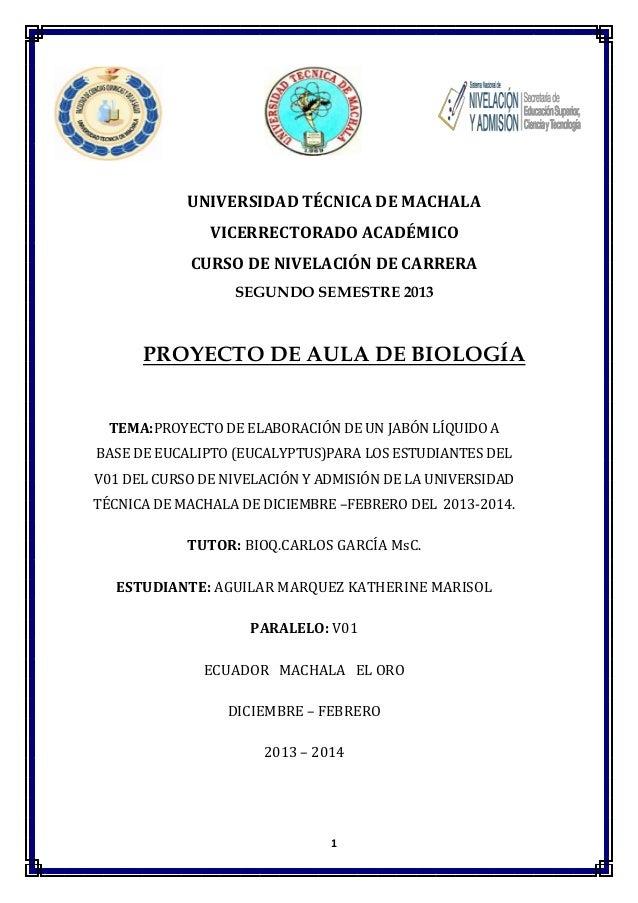 UNIVERSIDAD TÉCNICA DE MACHALA VICERRECTORADO ACADÉMICO CURSO DE NIVELACIÓN DE CARRERA SEGUNDO SEMESTRE 2013  PROYECTO DE ...