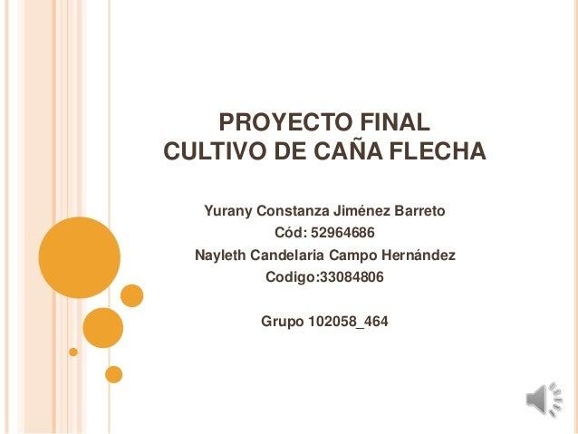 PROYECTO FINALCULTIVO DE CAÑA FLECHA   Yurany Constanza Jiménez Barreto            Cód: 52964686  Nayleth Candelaria Campo...