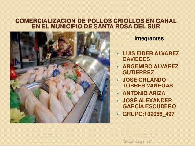 COMERCIALIZACION DE POLLOS CRIOLLOS EN CANAL EN EL MUNICIPIO DE SANTA ROSA DEL SUR Integrantes        LUIS EIDER ALV...