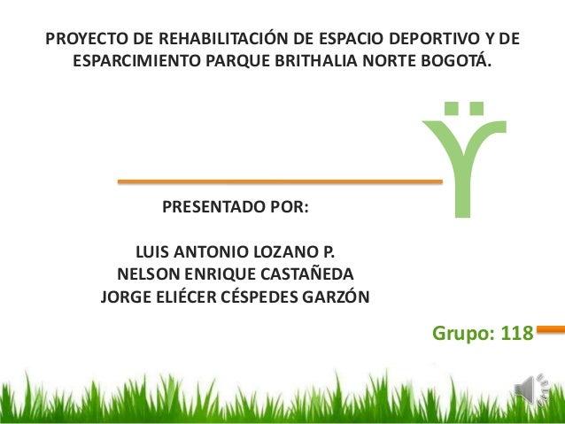 Proyecto final grupo_118_2013