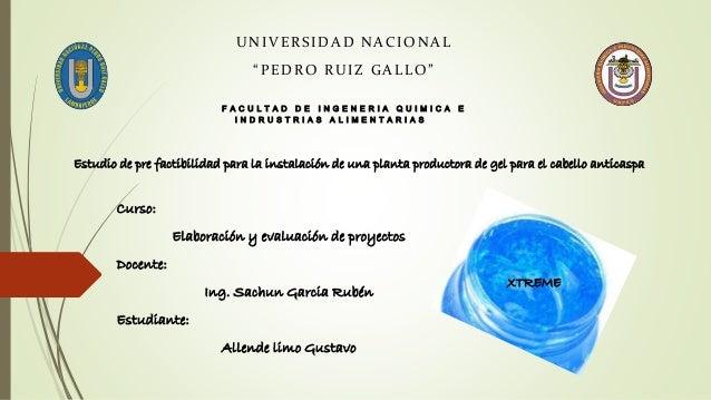 Curso: Elaboración y evaluación de proyectos Docente: Ing. Sachun Garcia Rubén Estudiante: Allende limo Gustavo Estudio de...