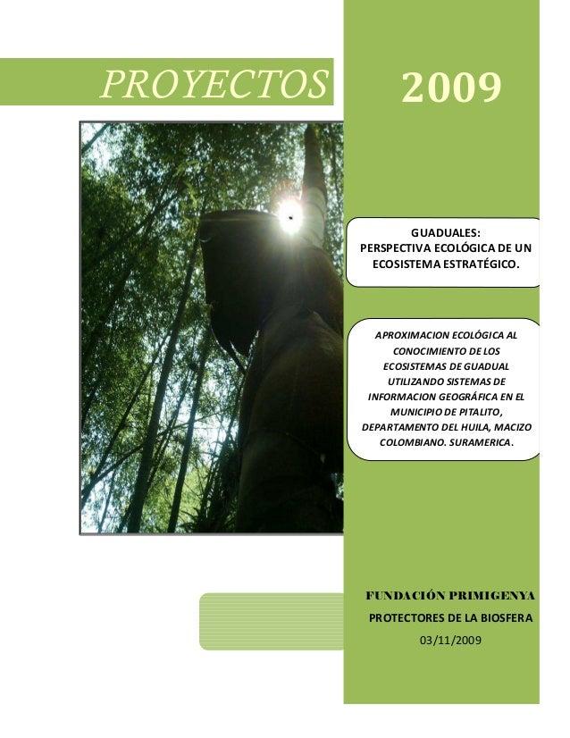 Proyecto guaduales primigenya2009