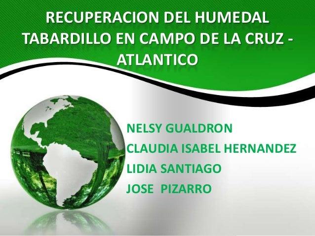 RECUPERACION DEL HUMEDALTABARDILLO EN CAMPO DE LA CRUZ -           ATLANTICO            NELSY GUALDRON            CLAUDIA ...