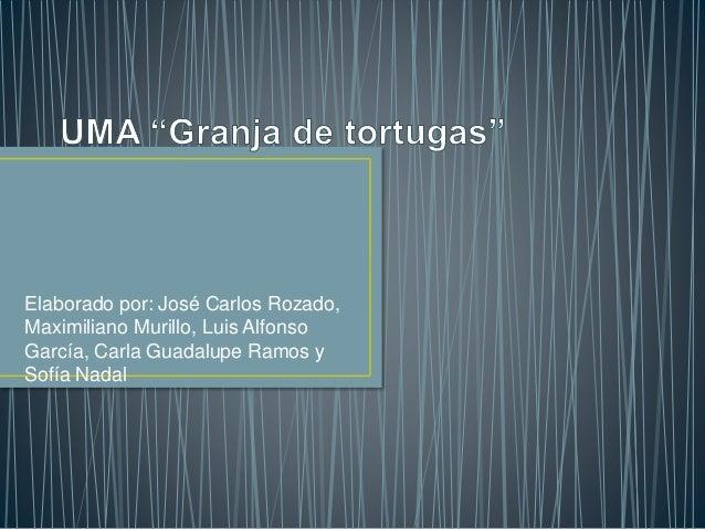 Elaborado por: José Carlos Rozado,  Maximiliano Murillo, Luis Alfonso  García, Carla Guadalupe Ramos y  Sofía Nadal