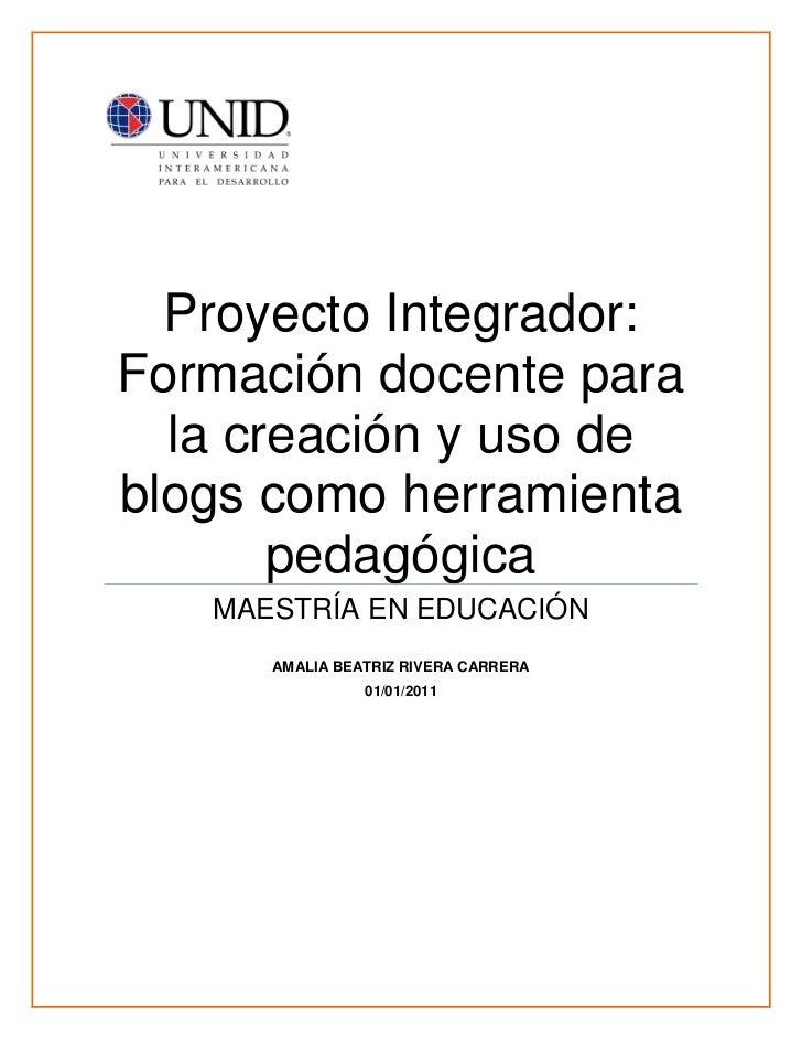 Proyecto integrador amalia_brc