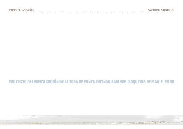 PROYECTO DE INVESTIGACIÓN DE LA ZONA DE PUNTA ENTINAS-SABINAR. ROQUETAS DE MAR-EL EJIDOAzahara Zapata A.María R. Carvajal