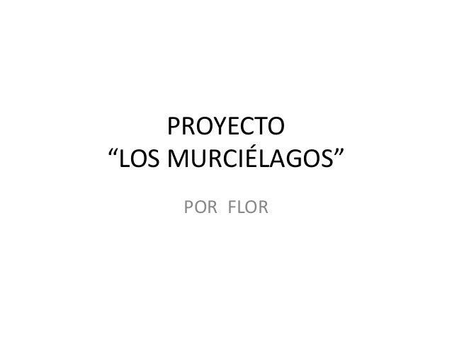 """PROYECTO""""LOS MURCIÉLAGOS""""     POR FLOR"""