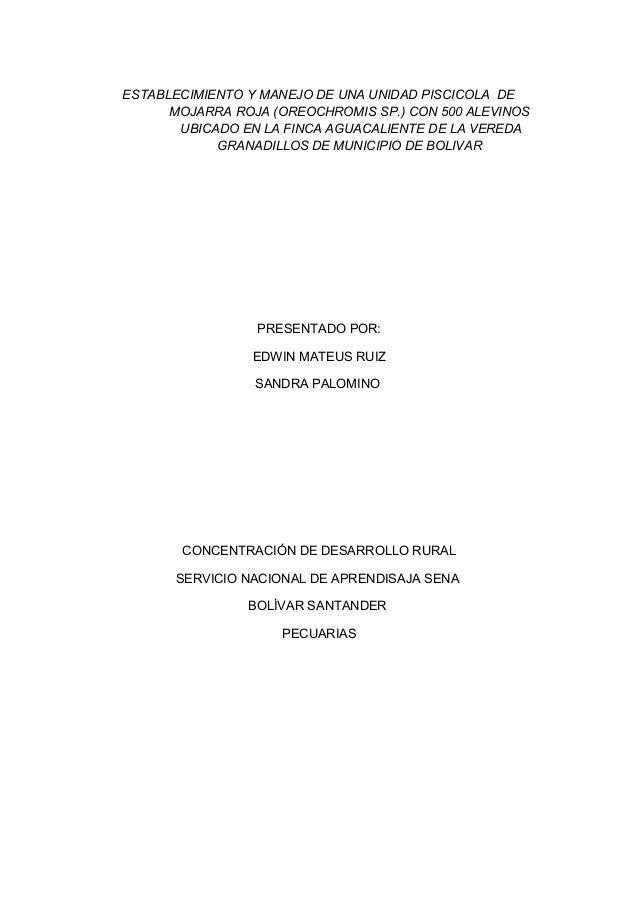 ESTABLECIMIENTO Y MANEJO DE UNA UNIDAD PISCICOLA DE MOJARRA ROJA (OREOCHROMIS SP.) CON 500 ALEVINOS UBICADO EN LA FINCA AG...