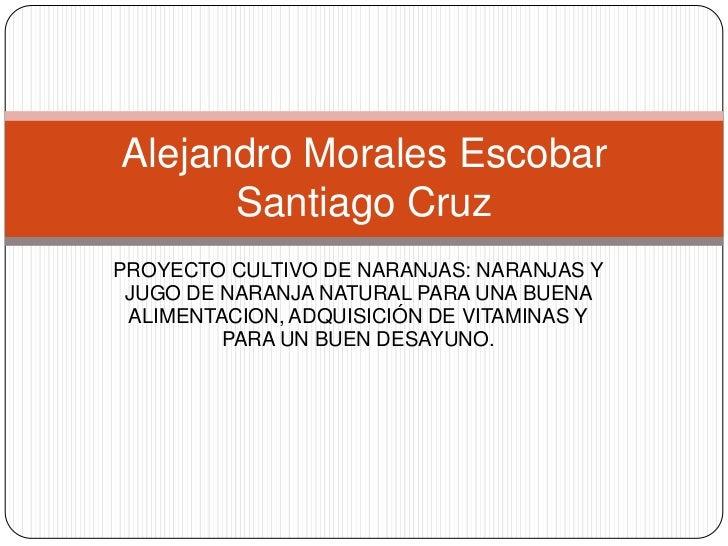Alejandro Morales Escobar      Santiago CruzPROYECTO CULTIVO DE NARANJAS: NARANJAS Y JUGO DE NARANJA NATURAL PARA UNA BUEN...