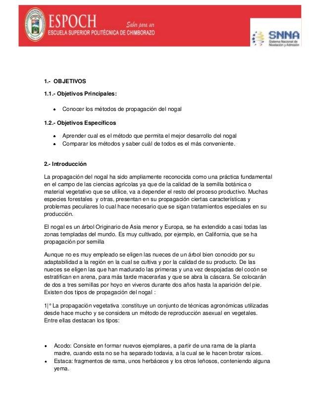 1.- OBJETIVOS1.1.- Objetivos Principales:Conocer los métodos de propagación del nogal1.2.- Objetivos EspecíficosAprender c...