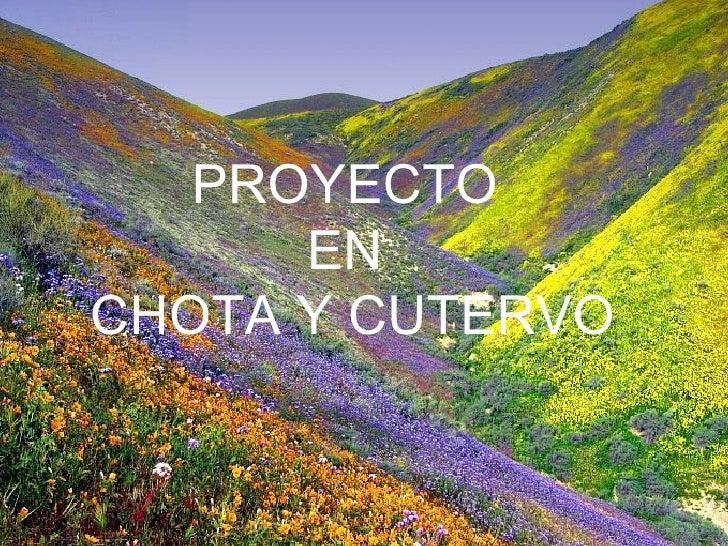 PROYECTO      ENCHOTA Y CUTERVO