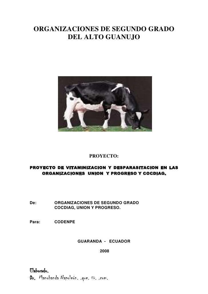 ORGANIZACIONES DE SEGUNDO GRADO DEL ALTO GUANUJO<br />103441570485<br />PROYECTO:<br />PROYECTO DE VITAMINIZACION Y DESPAR...