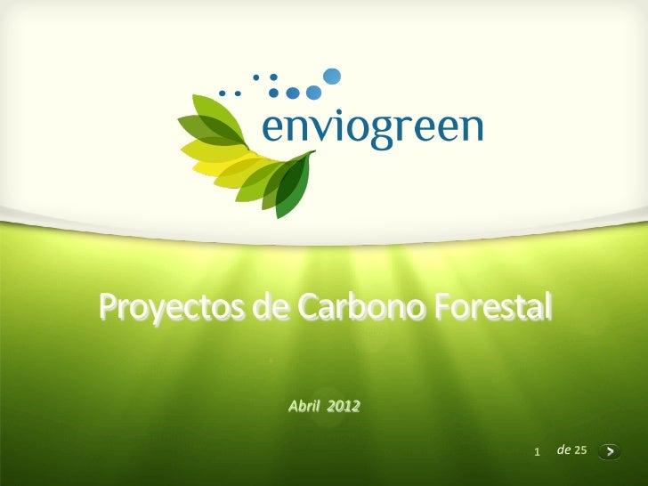 Proyectos de carbono forestal