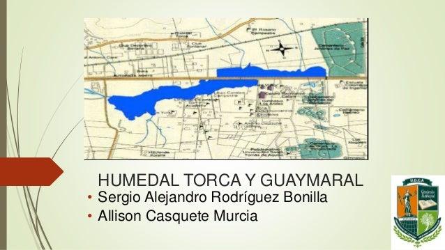 HUMEDAL TORCA Y GUAYMARAL • Sergio Alejandro Rodríguez Bonilla • Allison Casquete Murcia