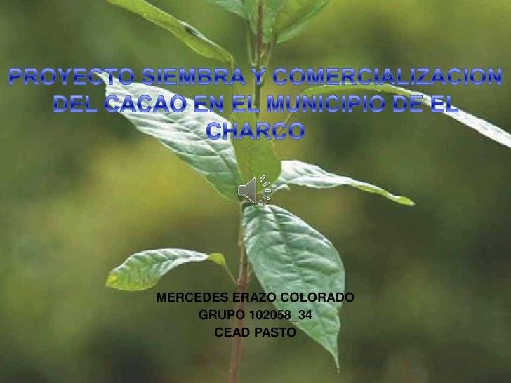 MERCEDES ERAZO COLORADO     GRUPO 102058_34       CEAD PASTO