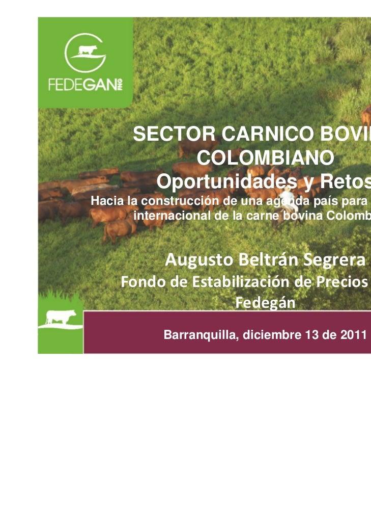 Proyectos Navarra: FEDEGAN: Oportunidades y Retos del Sector Cárnico Colombiano