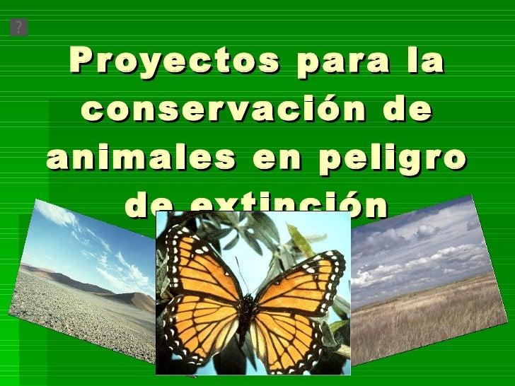 Proyectos para la conservación de animales en peligro de extinción