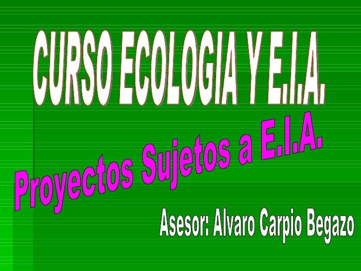 Proyectos Sujetos a E.I.A. CURSO ECOLOGIA Y E.I.A. Asesor: Alvaro Carpio Begazo