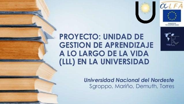 PROYECTO: UNIDAD DE GESTION DE APRENDIZAJE A LO LARGO DE LA VIDA (LLL) EN LA UNIVERSIDAD Universidad Nacional del Nordeste...