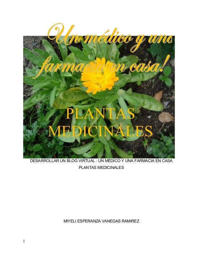 PLANTAS           MEDICINALES    DESARROLLAR UN BLOG VIRTUAL : UN MÉDICO Y UNA FARMACIA EN CASA                         PL...
