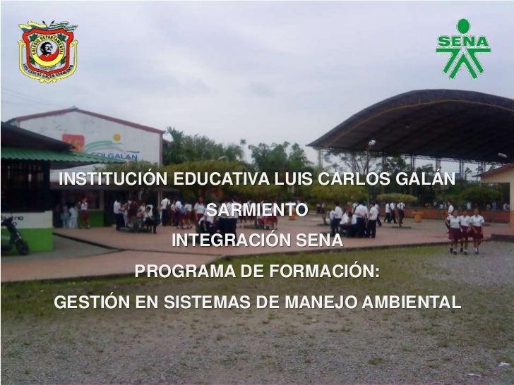 Proyecto vivero forestal institucional for Como iniciar un vivero