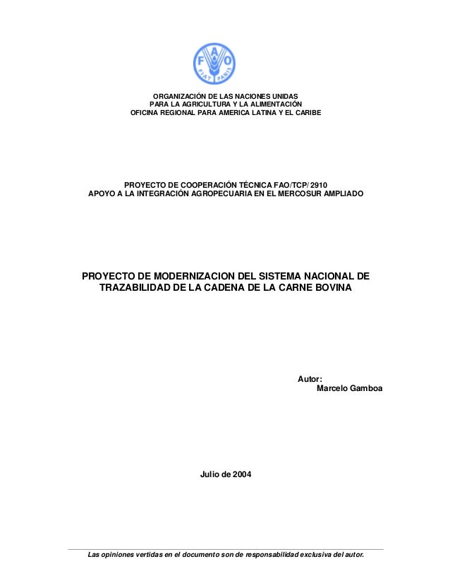 Las opiniones vertidas en el documento son de responsabilidad exclusiva del autor. ORGANIZACIÓN DE LAS NACIONES UNIDAS PAR...