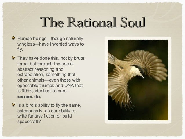 Atheists, do you have a soul/spirit?