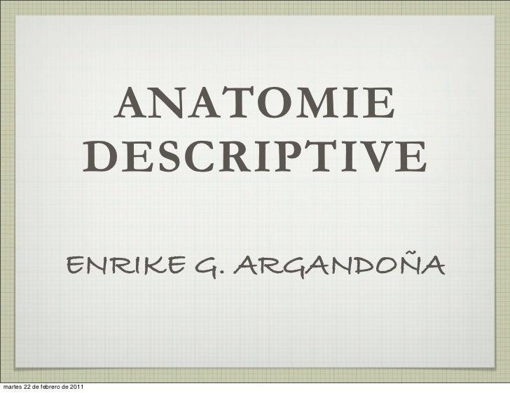 ANATOMIE                          DESCRIPTIVE                    ENRIKE G. ARGANDOÑAmartes 20 de septiembre de 2011