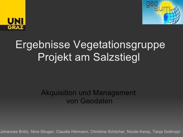 Ergebnisse Vegetationsgruppe Projekt am Salzstiegl  Akquisition und Management  von Geodaten Johannes Brötz, Nina Struger,...