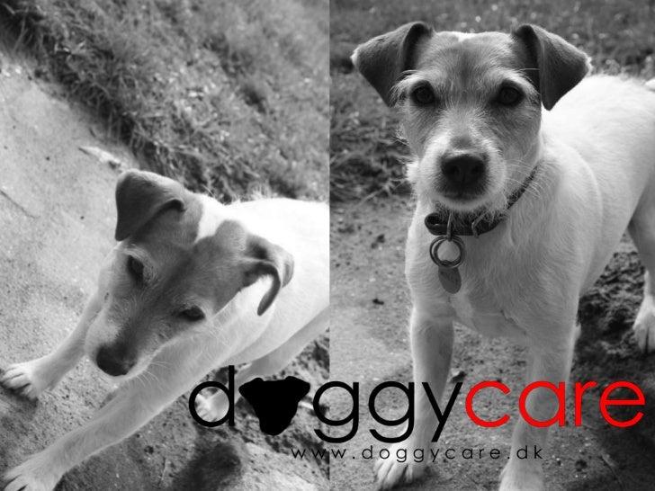 Powerpoint præsentation Doggycare