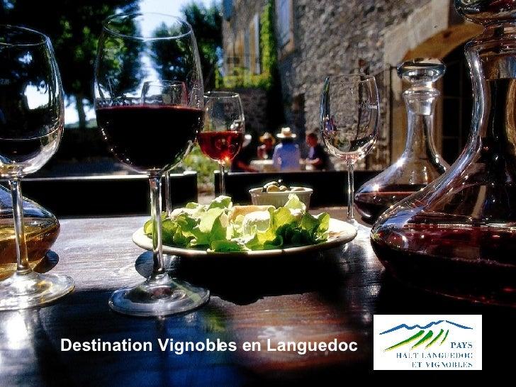 Destination Vignobles en Languedoc
