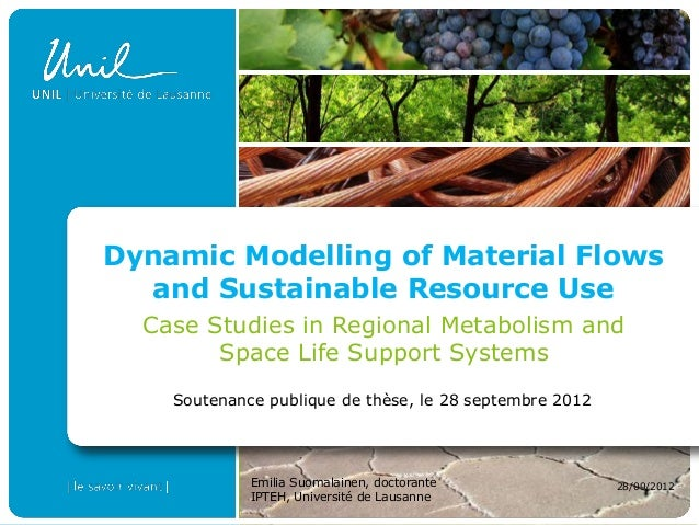 Dynamic Modelling of Material Flows  and Sustainable Resource Use  Case Studies in Regional Metabolism and        Space Li...