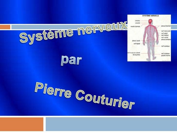 Système nerveux <br /> par<br /> Pierre Couturier<br />
