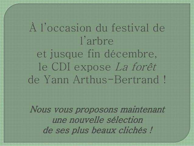À l'occasion du festival de  l'arbre  et jusque fin décembre,  le CDI expose La forêt  de Yann Arthus-Bertrand !  Nous vou...