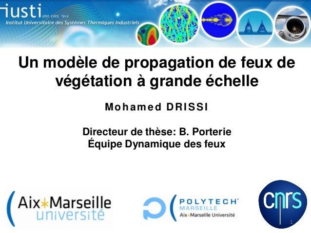 Un modèle de propagation de feux de végétation à grande échelle Mohamed DRISSI Directeur de thèse: B. Porterie Équipe Dyna...