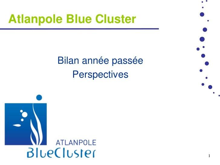 Atlanpole Blue Cluster        Bilan année passée            Perspectives                             1