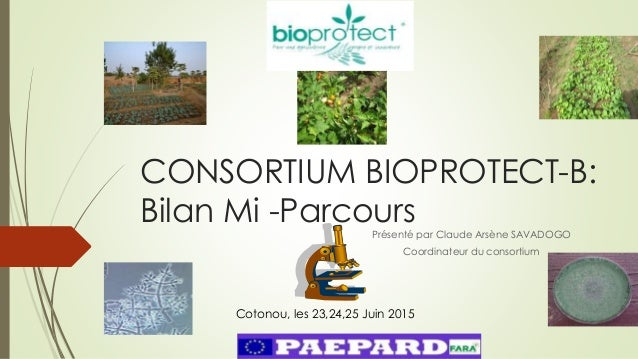 CONSORTIUM BIOPROTECT-B: Bilan Mi -ParcoursPrésenté par Claude Arsène SAVADOGO Coordinateur du consortium Cotonou, les 23,...