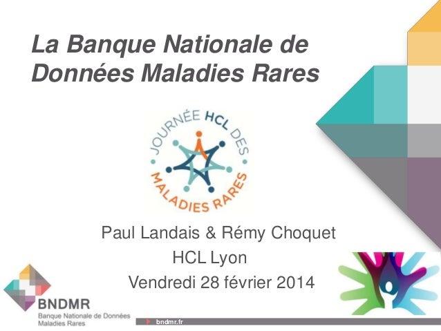 bndmr.fr bndmr.fr La Banque Nationale de Données Maladies Rares Paul Landais & Rémy Choquet HCL Lyon Vendredi 28 février 2...