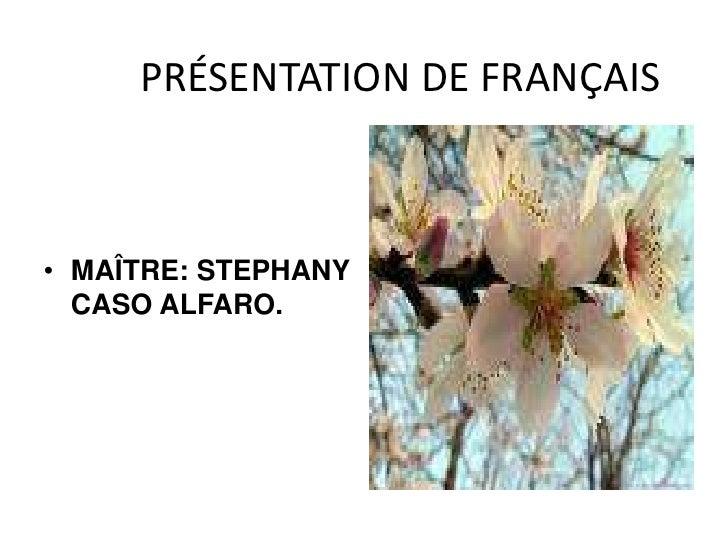 PRÉSENTATION DE FRANÇAIS<br />MAÎTRE: STEPHANY CASO ALFARO.<br />