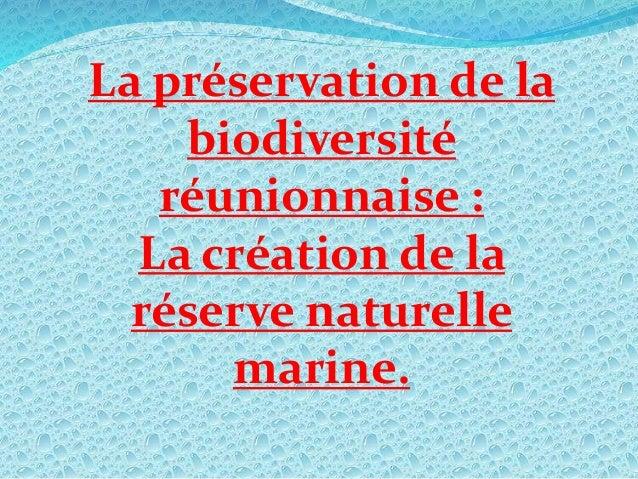 La préservation de la biodiversité réunionnaise : La création de la réserve naturelle marine.