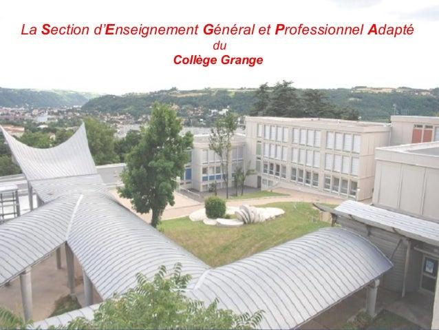 La Section d'Enseignement Général et Professionnel Adapté du Collège Grange
