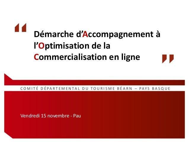 Démarche d'Accompagnement à l'Optimisation de la Commercialisation en ligne  C O M I T É D É PA R T E M E N TA L D U T O U...