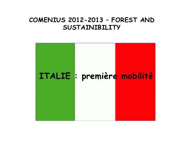 COMENIUS 2012-2013 – FOREST AND       SUSTAINIBILITY  ITALIE : première mobilité