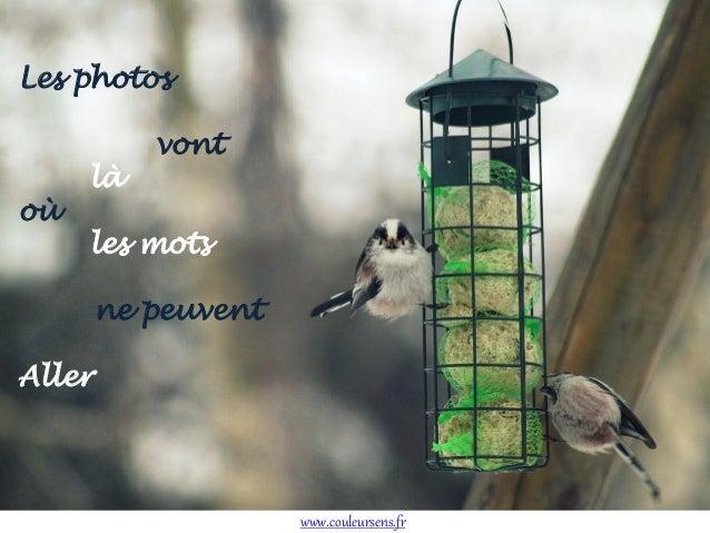 Les photos  où  là  vont  les mots ne peuvent  Aller  www.couleursens.fr