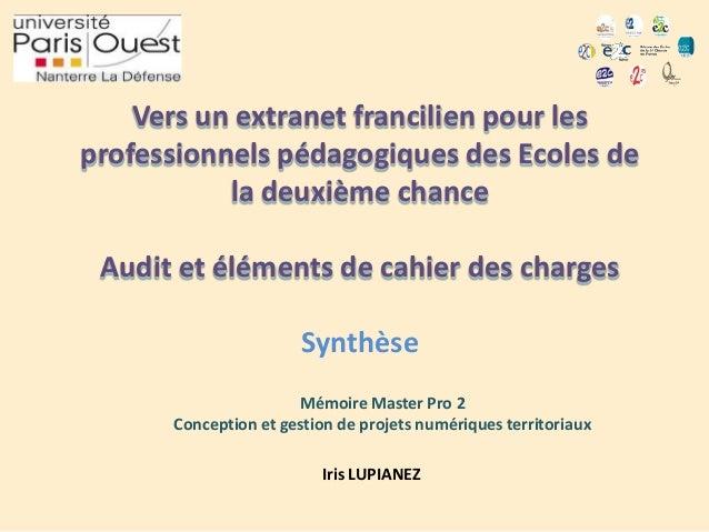 Vers un extranet francilien pour les professionnels pédagogiques des Ecoles de la deuxième chance Audit et éléments de cah...