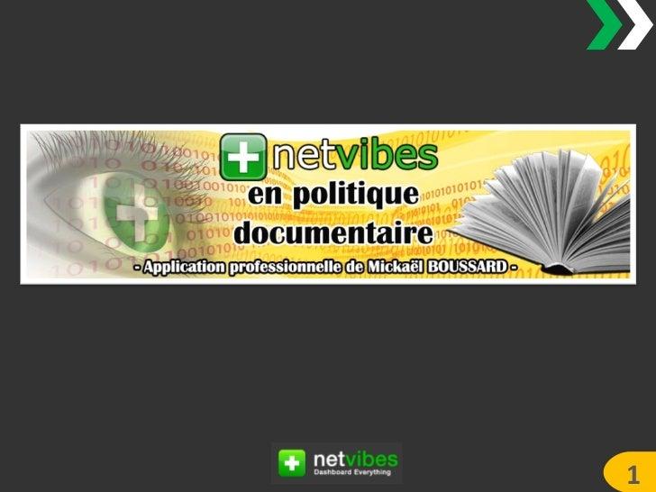 Présentation stage Netvibes en politique documentaire